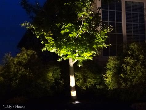 Diy Landscape Lighting Diy Landscape Lighting