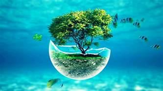 Desktop Wallpaper X Underwater Tree Widescreen Hd Abstract Desktop Wallpaper