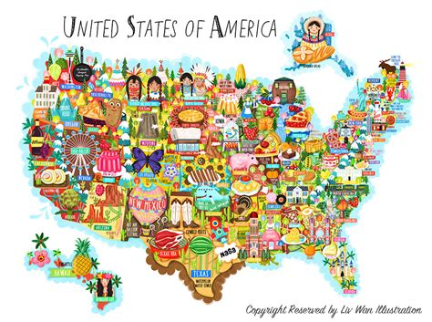 the usa map united states of america map illustration liv wan