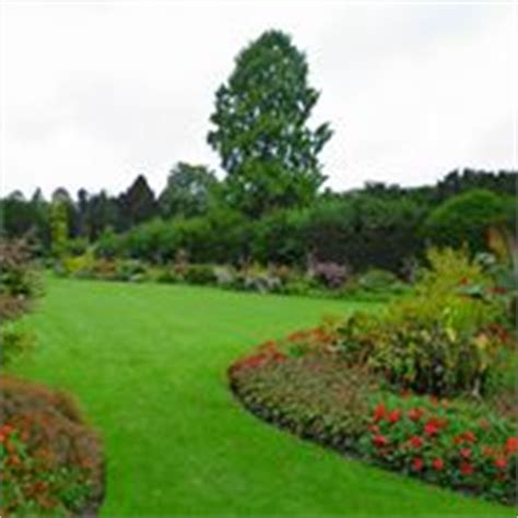prato per giardino erba per giardino prato