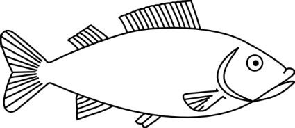 coloring pages of cod fish simple fish outline clip art clipart panda free