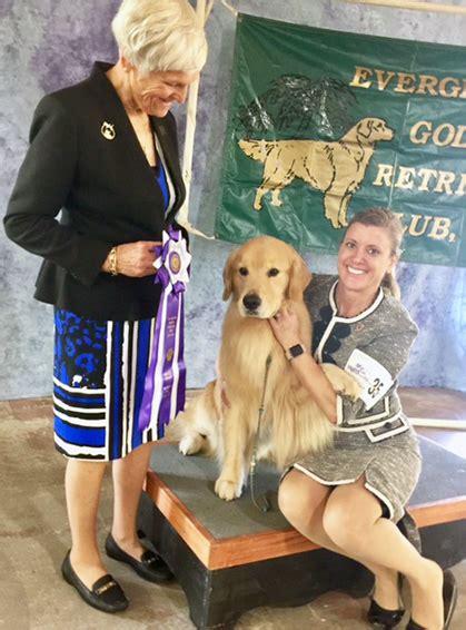 everglades golden retriever club everglades golden retriever club friday march 10 2017 canine chronicle