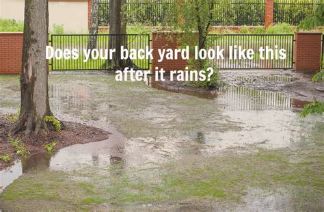 home maintenance tip solve poor yard drainage issues