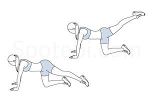 Single Level Home Plans Back Leg Lifts Illustrated Exercise Guide