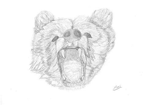 imagenes a lapiz de osos dibujo a lapiz oso by matidefagot on deviantart