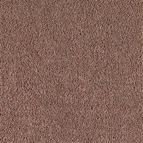 home decorators collection san rafael ii s color