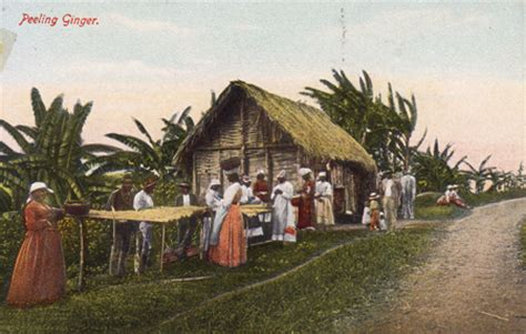 Jamaican Records Jamaican History In Postcards A Parcel Of Ribbons