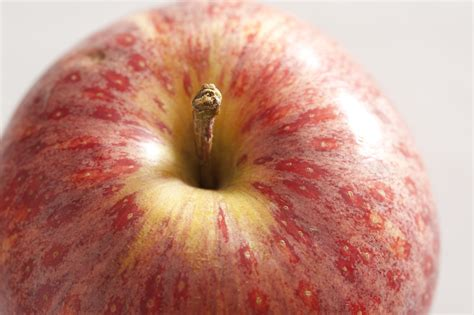 fruit up up of apple free stock image