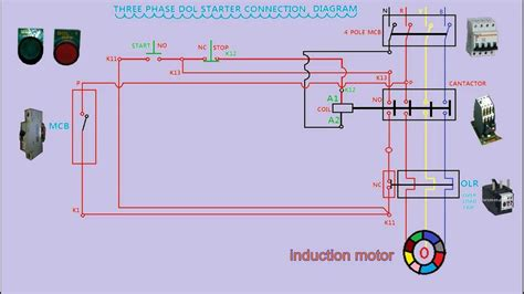 dol starter diagram dol starter connection diagram in animation