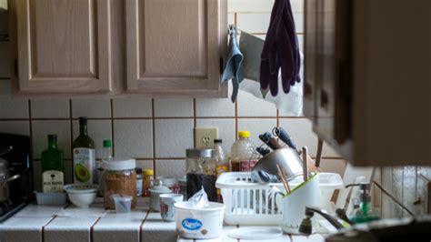 common kitchen pests  tips  prevent  infestation