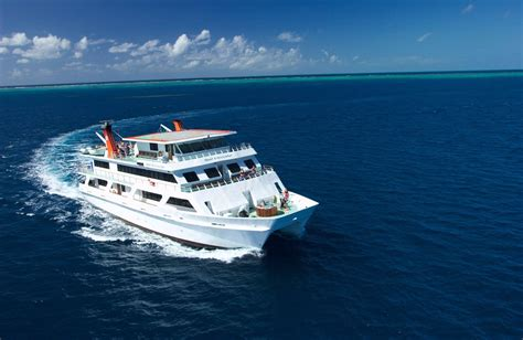 catamaran cruise great barrier reef great barrier reef diving cairns cheapest liveaboard