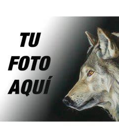 imagenes y frases com fotomontaje con una foto de un lobo para hacer collages