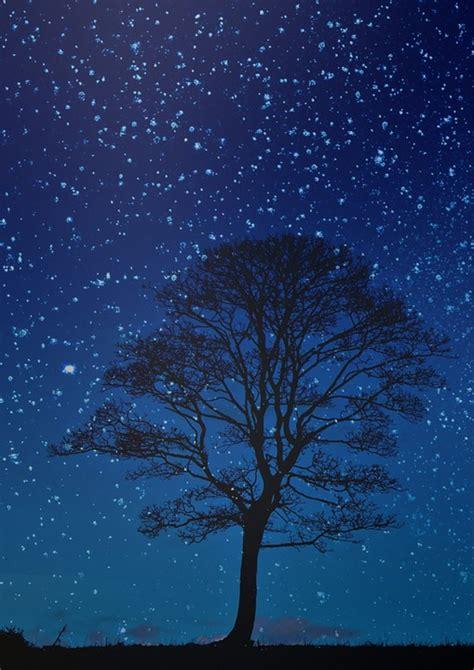 Malam Royalty Green free illustration tree sky blue sky free image on pixabay 1808524