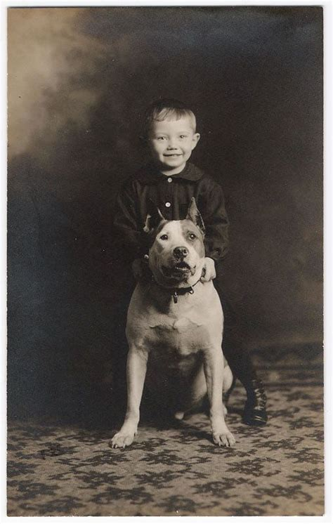 pitbull nanny great vintage kiddo and pit bull smiles pitties