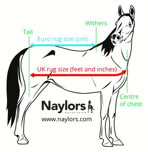 rugs how to measure correctly naylors
