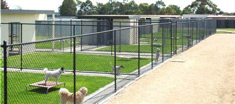 boarding kennels boarding kennels melbourne kennels bayside pet centre
