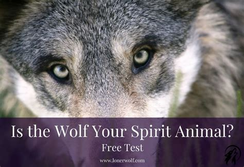 test animale guida totem animals wolf www pixshark images galleries