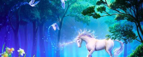 imagenes de amor unicornios unic 243 rnios voc 234 acredita neles e mais se inspire para o