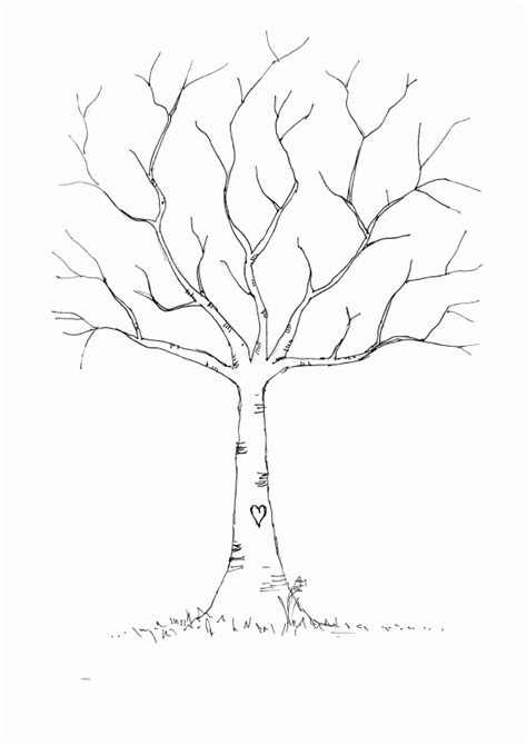 Bare Tree Template bare tree coloring page coloring home