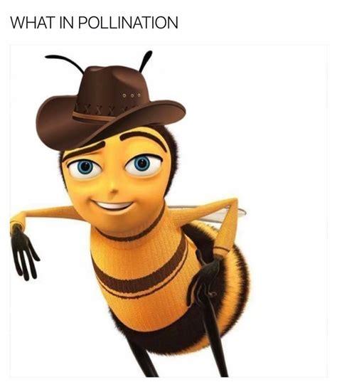 bee script meme bee memes bees bee and scripts