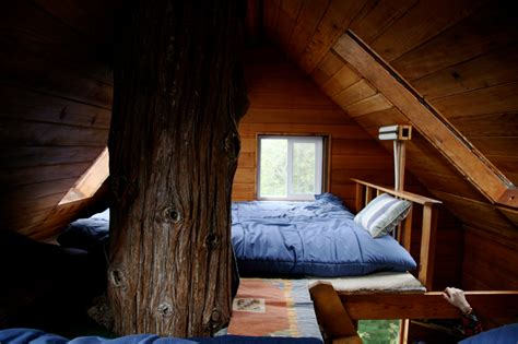 treehouse bedroom furniture coolest treehouse bedroom with additional interior design