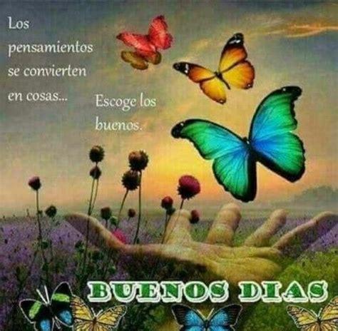 imagenes de mariposas buenos dias buenos dias http enviarpostales net imagenes buenos dias