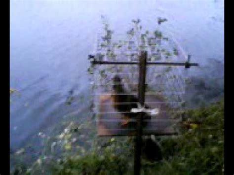 hutte chasse chasse a la hutte mais canne mignon en cage