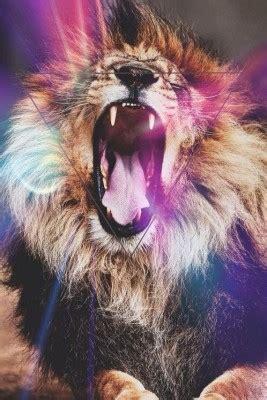 wallpaper tumblr lion fondo de pantalla hipster para celulares fondos de