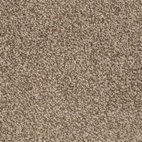 stainmaster rugs shop stainmaster trusoft briar patch pebbled shore textured indoor carpet at lowes