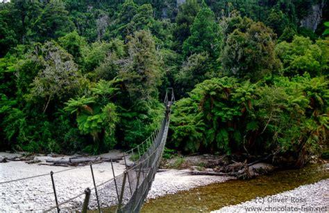 swing neuseeland neuseeland s 252 dinsel crossing a swing bridge on the heaphy
