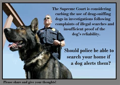 Supreme Court On Search And Seizure Us Supreme Court Takes Up Florida Sniffing Dogs