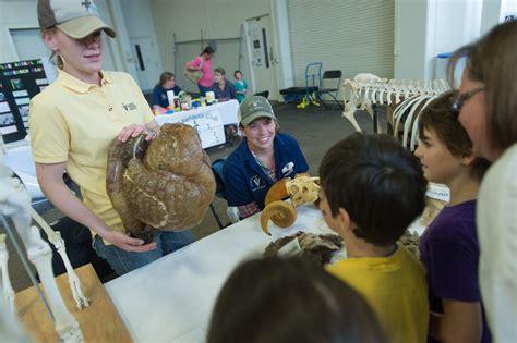 animal house vet veterinary teaching hospital offers inside view of animal