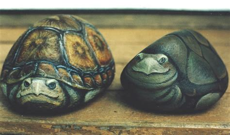 painted rocks turtles images  pinterest rock