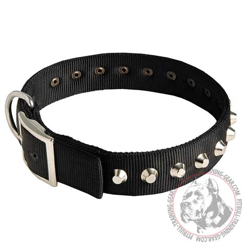 pitbull puppy collars buy designer adjustable pitbull collar walking gear