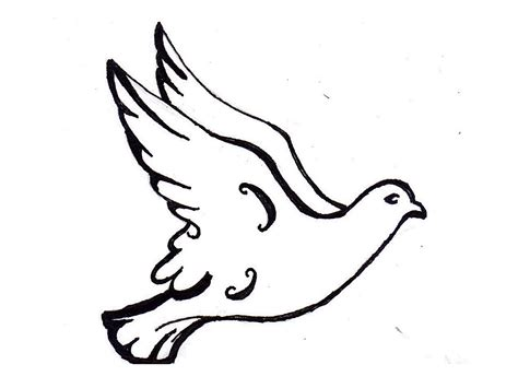 white dove drawings clipart best