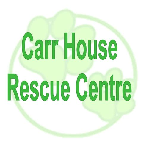carr house dog rescue carr house animal rescue and welfare centre hull