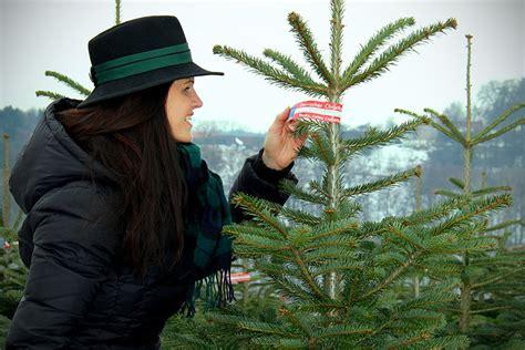 Christbaum Richtig Lagern by Christbaum Aus Der Heimat Tipps Zum Weihnachtsbaumkauf