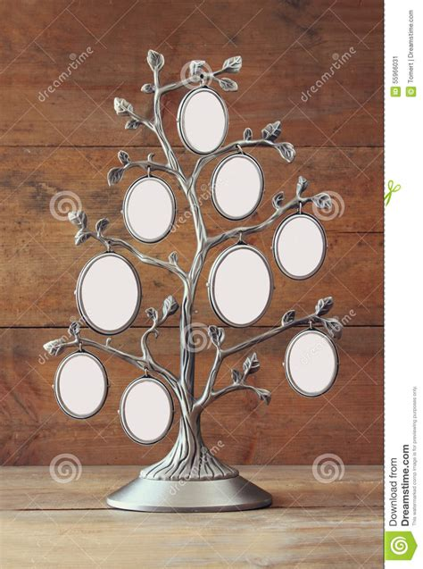 Image Of Vintage Antique Classical Frame Of Family Tree Stock Image Image Of Elegant Vintage Family Frames Tree Stock Image Image 32018791