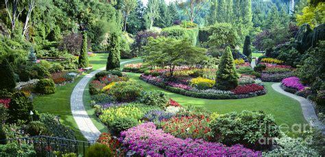 Vancouver Butchart Sunken Gardens Beautiful Flowers No Garden Flowers Vancouver