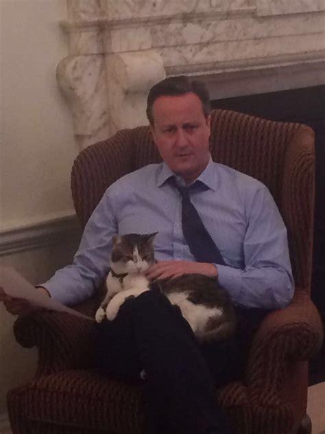 casa primo ministro inglese larry il gatto primo ministro inglese