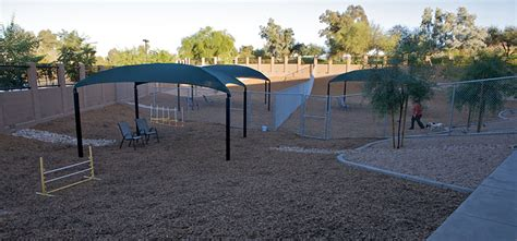 photo gallery second home pet resort az