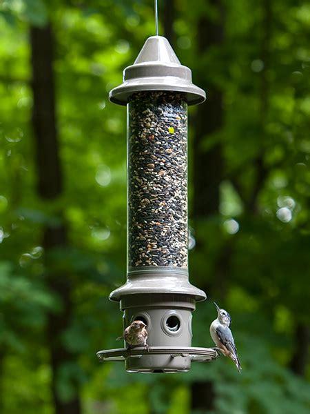 squirrel proof feeders wbumadison
