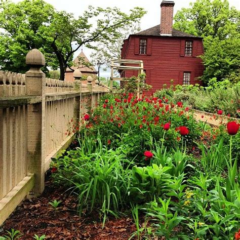 Williamsburg Garden by 141 Best Images About Colonial Gardens On Gardens Bee Skep And Picket Fences