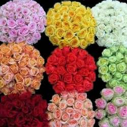 wholesale roses s day flowers last chance specials fiftyflowers the