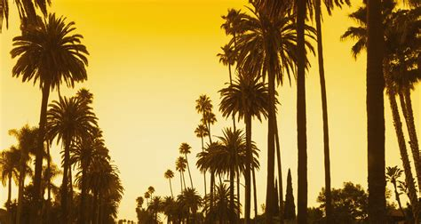 los angeles los angeles wallpapers hd