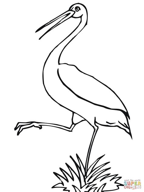 stork coloring page free printable coloring pages