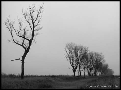 imagenes de paisajes tristes paisaje triste imagui