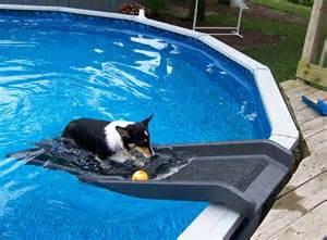 backyard pool with slide backyard pool slide backyard design ideas