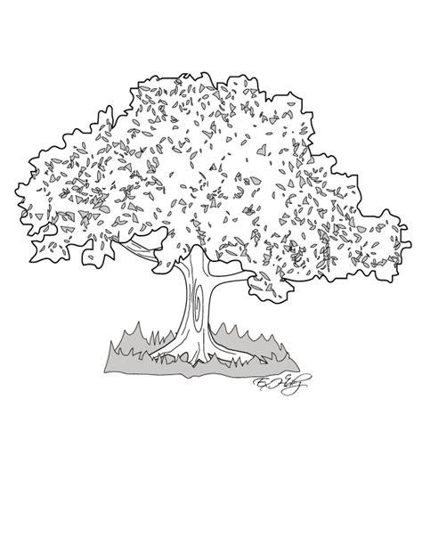 arbol de ceiba para colorear s 237 mbolos patrios miblogchapin s blog