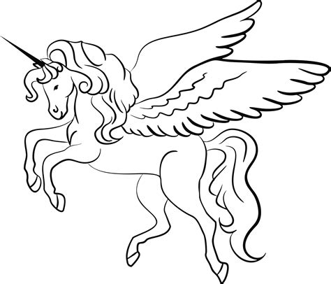 black and white coloring pages of unicorns unicorn with wings drawing www pixshark com images